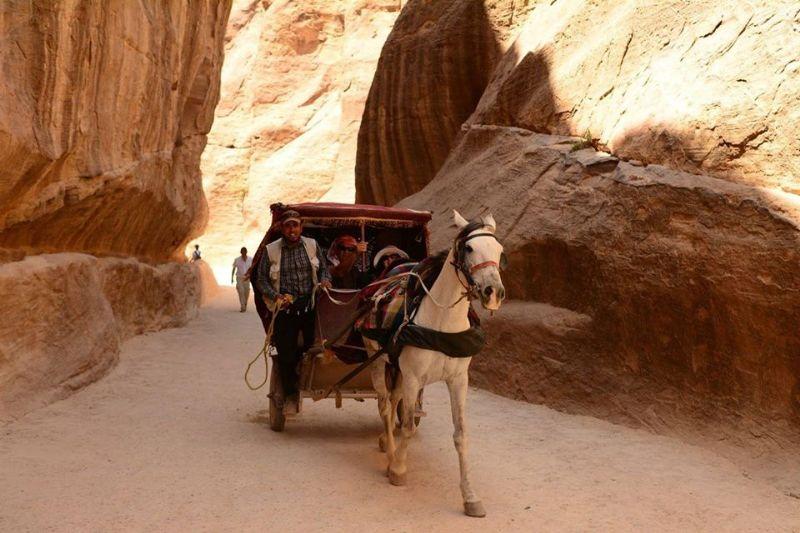 Petra day tour siq